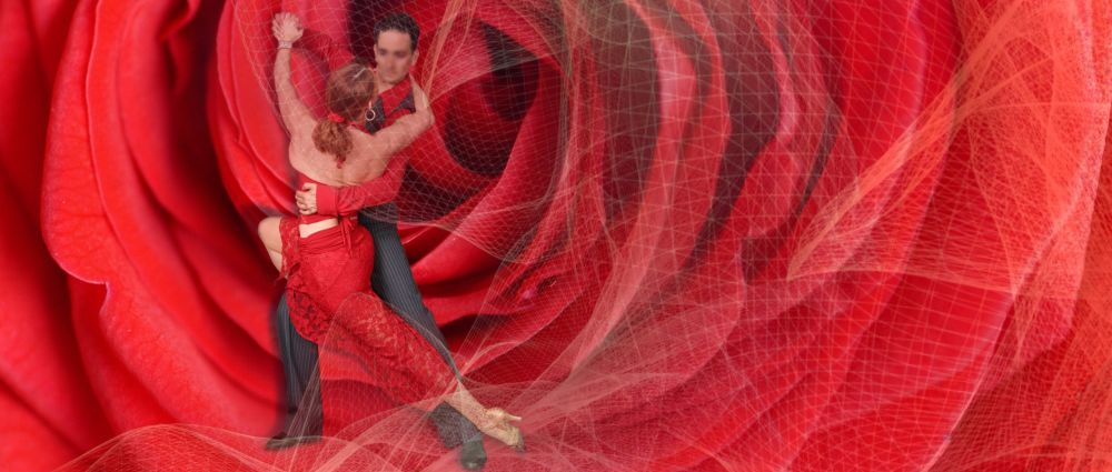 tanzen-musik-standard-latein-romantisches-tanzpaar